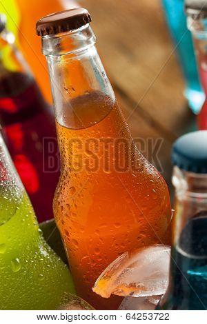 Assorted Organic Craft Orange Soda