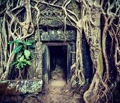 image of worship  - Vintage retro effect filtered hipster style travel image of ancient stone door and tree roots - JPG