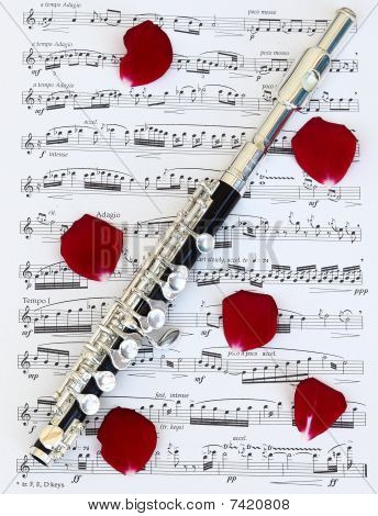 Love for Piccolo Music