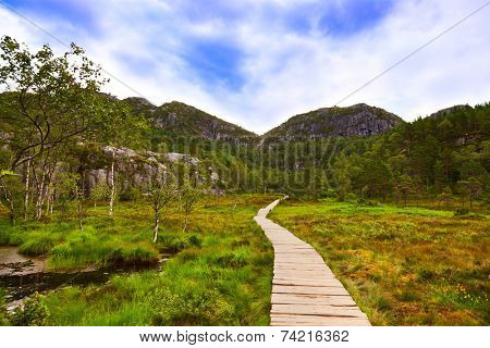 Mountains on the way to the Cliff Preikestolen in fjord Lysefjord - Norway - nature and travel background