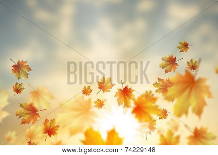 Background conceptual image with autumn falling leaves