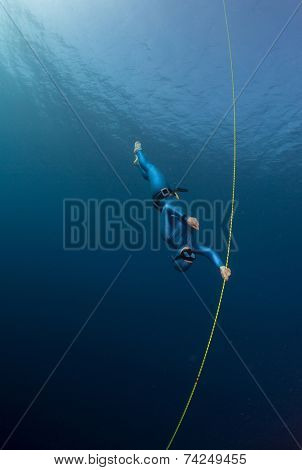 Lady free diver descending along the rope