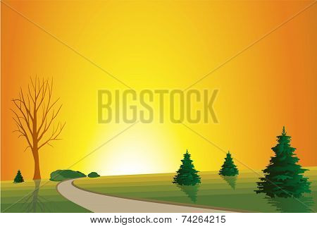 Tree Silhouette on Hill