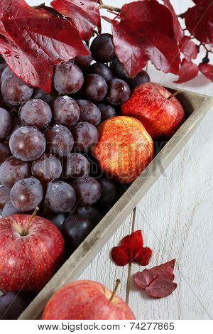 Autumn Harvest:  Red Grapes And Apples On A Gray Tray