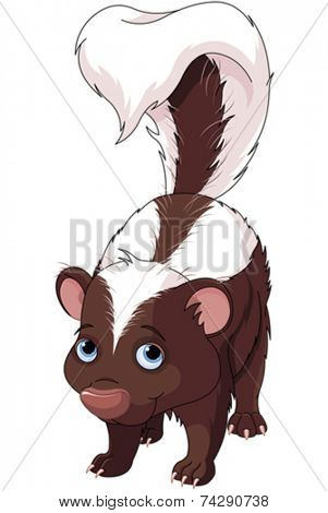 Illustration of very cute skunk