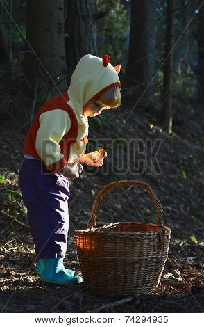 Little Girl  And  Mushroom