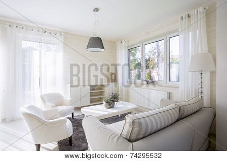 Interior Of Comfy Living Room