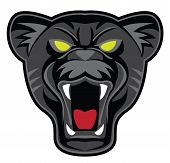pic of panther  - panther head Editable  - JPG