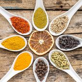 foto of garam masala  - Variety of spices on wooden background - JPG
