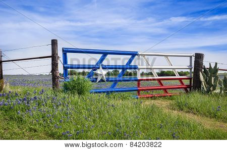 Texas Bluebonnets Along A Fence In Spring