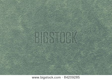 Grained Texture Fabric Of Pale Green Color