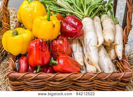 Agriculture Harvested Pepper And Radish In Basket
