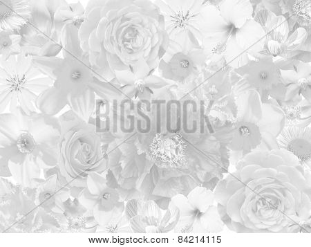 Floral Mourning Background