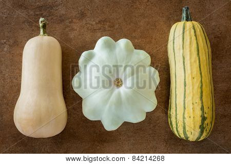 Three Squash Varieties