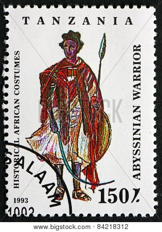 Postage Stamp Tanzania 1993 Abyssinian Warrior