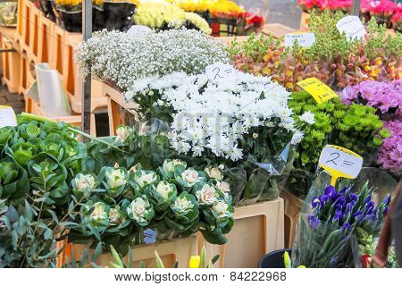 Flowers For Sale At A Dutch Flower Market, Netherlands