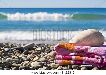 Shell And Towel.