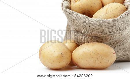 raw fresh potatoes in burlap bag white copy space