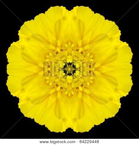 Yellow Flower Mandala Kaleidoscope Isolated On Black