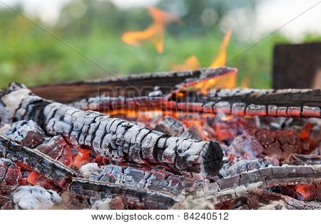Closeup Of Hot Burning Firewood In Campfire