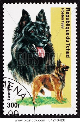 Postage Stamp Chad 1971 Belgian Shepherd, Dog