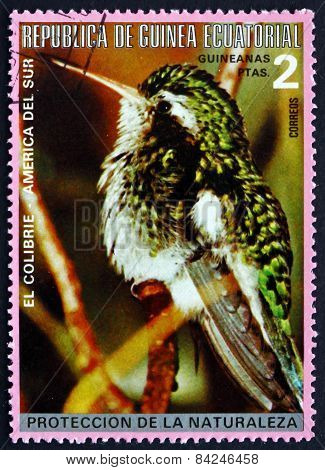 Postage Stamp Equatorial Guinea 1977 Colibri, South American Bir