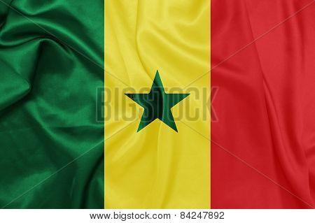 Senegal - Waving national flag on silk texture