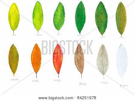 Calendar of watercolor leaves