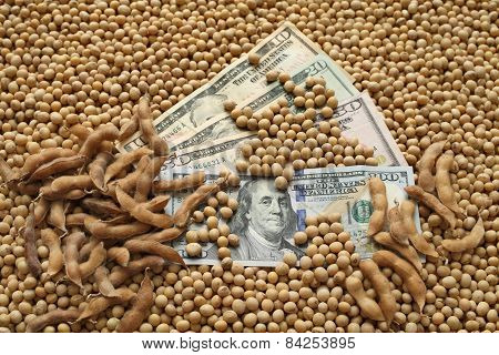 Agricultural Concept, Soybean And Money