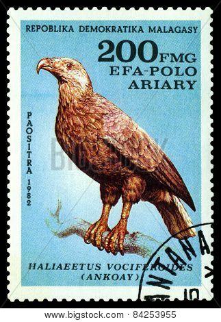 Vintage  Postage Stamp. Bird Haliaeetus Vociferoides.