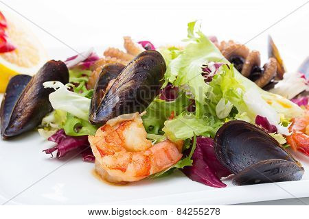 Salad mix with boiled shrimp