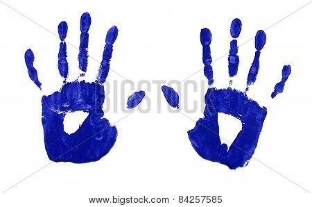 Handprints In Blue Paint