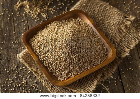 Raw Organic Sesame Seeds