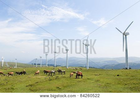 Wind Turbines On A Wind Farm In Galicia, Spain