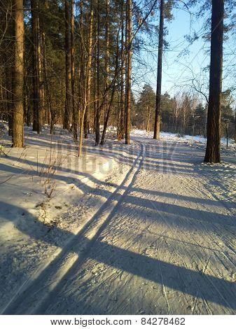 Sunny ski run