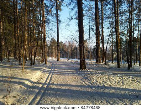 Evening ski run