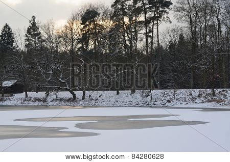 Holna Pond In Winter, South Bohemia