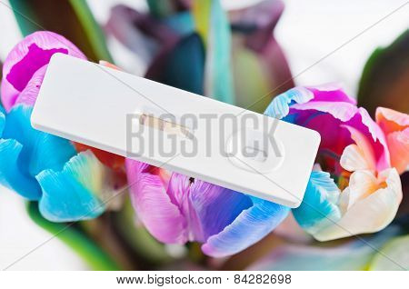 Closeup of pregnancy test and multicolored tulips