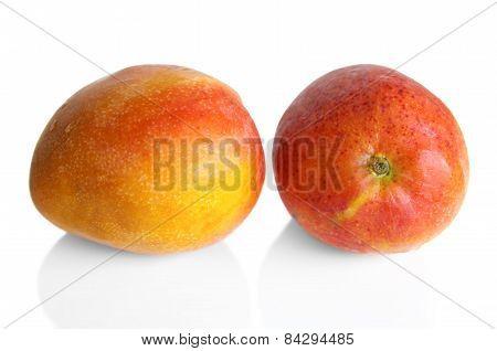 Two Mango Fruit