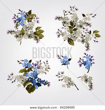 Vector Set Of Bouquets With Forget-me-not