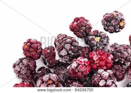 Frozen Dewberries Isolared On White Background. Shallow Depth Of Field