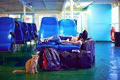 stock photo of sleeping bag  - boy sleeps on seats during exhausting journey on ferry boat - JPG