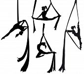 pic of contortion  - aerial silk dancer in silhouette illustration vector - JPG