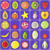 picture of nod  - Fruit icons vector graphic illustration design art - JPG