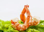 stock photo of shrimp  - Mixed green salad with shrimps for appetizer - JPG