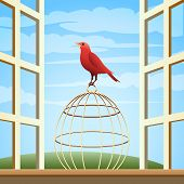 foto of songbird  - Songbird sitting on a cage in open window - JPG