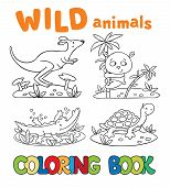 stock photo of alligator baby  - Coloring book or coloring picture with wild animals - JPG