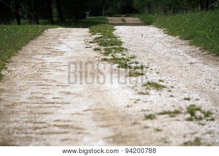 Country Road In The Summer Time As A Background