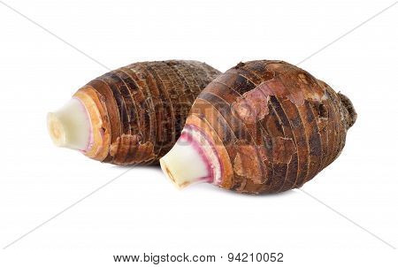 Unpeeled Whole Taro On White Background