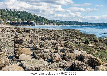 West Seattle Shoreline